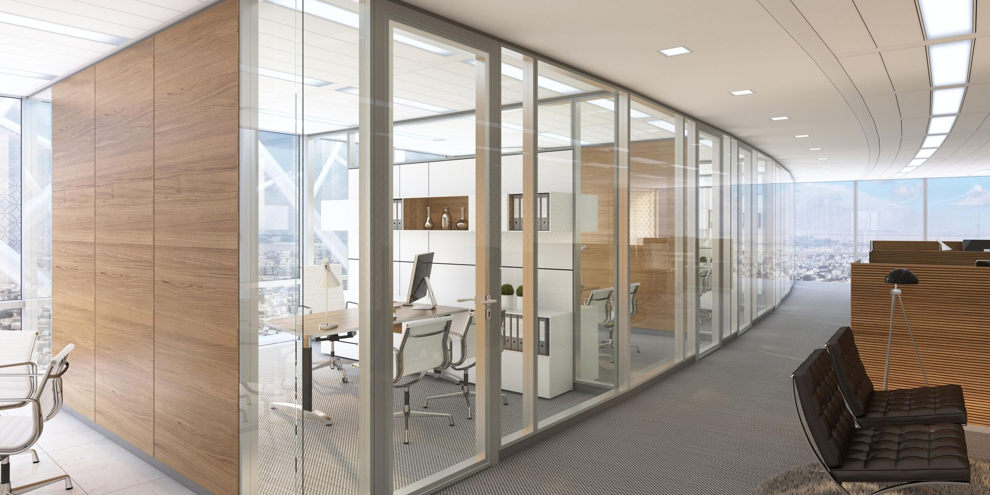 T65 double-glazed partition system with structural glazing